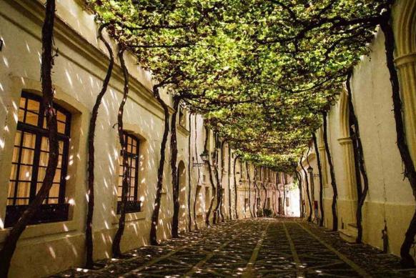 La importancia del patrimonio de Jerez como Ciudad Europea de la Cultura 2031